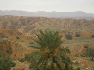 Tunisia Capodanno 2006 041